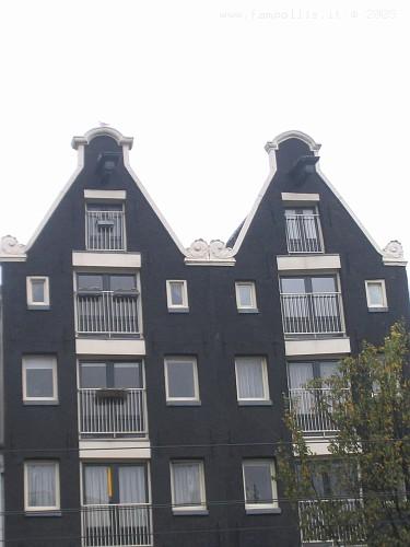 Amsterdam, le Case Tipiche. Tetti