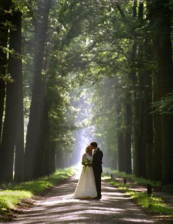 Sposi olandesi sotto gli alberi