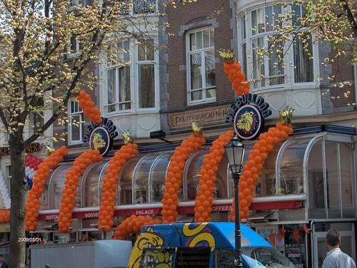 Amsterdam, il giorno della Regina, Aprile 09, il Bulldog in arancione