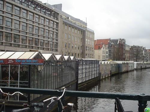 Amsterdam il Mercato dei Fiori